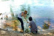 Efectos de plaguicidas y otros contaminantes en organismos acuáticos